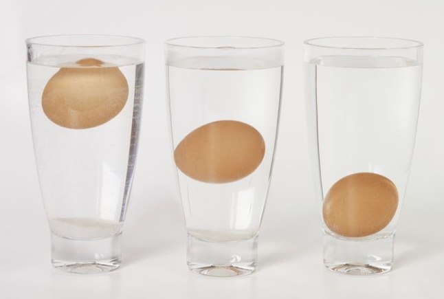 Eggs Water Test